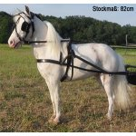 Trotting Harness