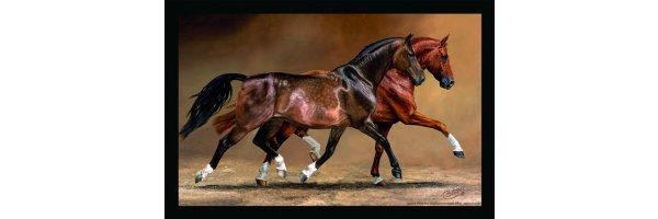 Exclusive Horsemotives