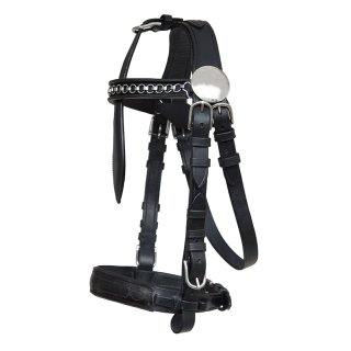 """Harness Bridle """"Top Class"""" without blinkers"""