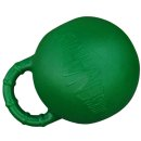 "Horse Playing Ball ""Horsen Around"" green / apple"