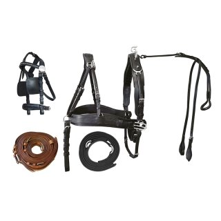 "Pair harness ""Top Class"", XFull"