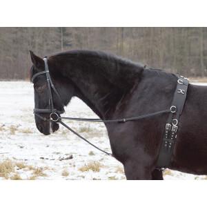 Dreieckszügel - Wienerzügel schwarz Pony