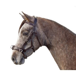 "Multitrense ""German Riding"" 4in1"