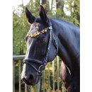 Amber bridle German Riding Luxury
